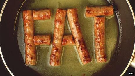 fat-image-diet